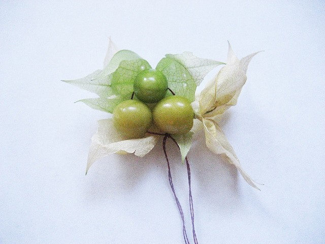 Leah Gauthier, Ground Cherries 2011, ground cherries grown by the artist and embroidery thread