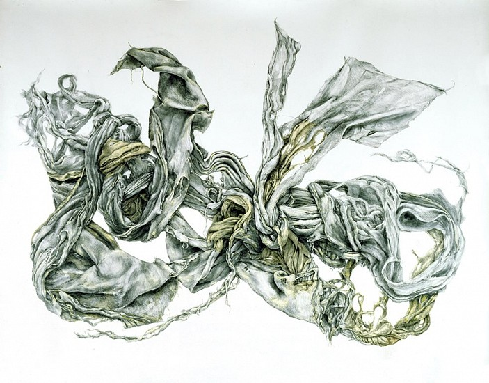Z Behl, Blankey 2007, graphite and vellum on paper