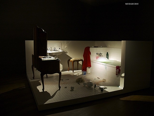 Mac Adams, The Bathroom 2010, mixed media