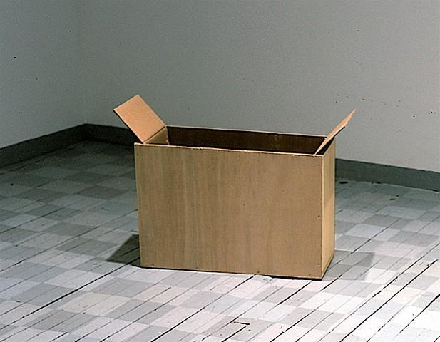 Hans Accola, Box 2000, wood, cardboard, nails