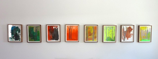 Meghan Gerety, Installation View 2012, acrylic and graphite on paper, framed in waxed walnut