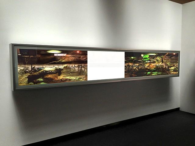 Jaime de la Jara, Diorama II 2013, light box and durations transparency
