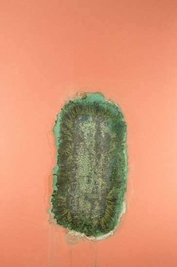 Alexander Viscio, Miracle Grow 1999, dustmop, miracle grow, pigment and shellac laminated to plate glass
