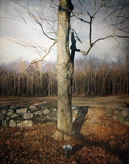 Trey Friedman, Trees on a Line #150 2013, oil on canvas