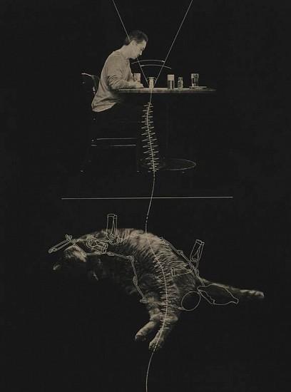 Phillip Chen, Noumena: Vinculum 2014, Relief printed etching