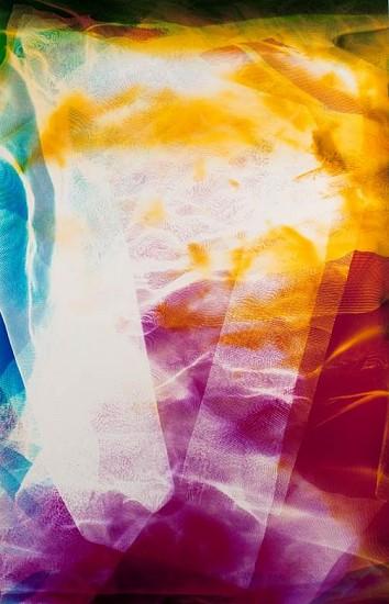 Bryan Graf, Catalina 2014, Chromogenic Photogram