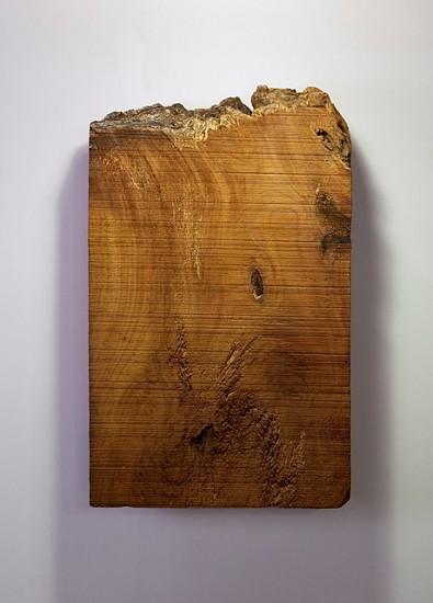 Bhuvanesh Gowda, Vigin & Volatile 2011, wood