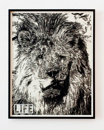 Adam Helms, Untitled (LIFE: Marjan, Blind Lion) 2011, charcoal and pastel on rice paper